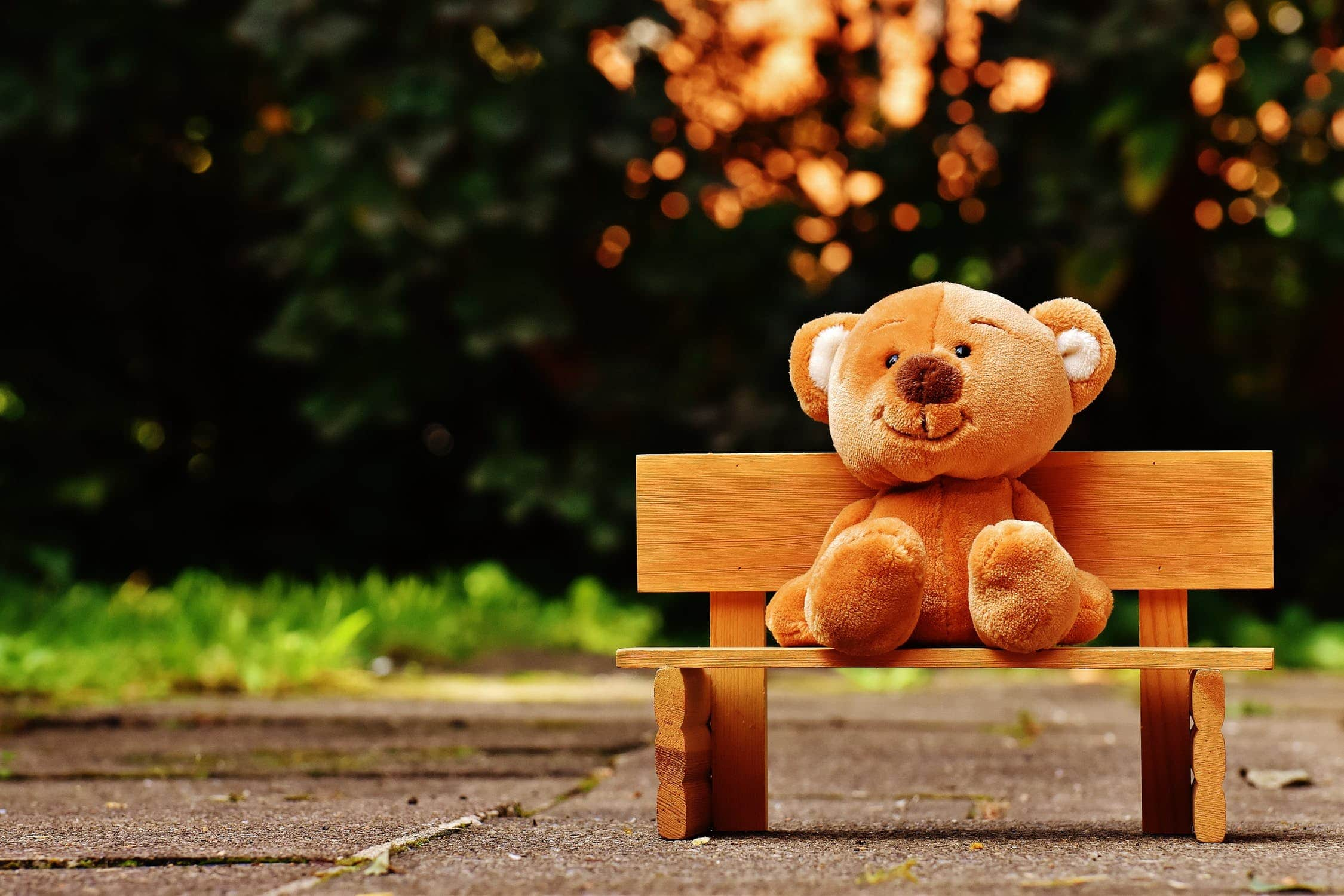Wooden bench with a teddy bear sat on it